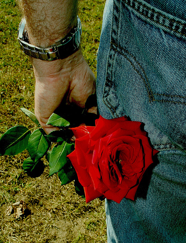 Roses are red... But if they are allergic to flowers, perhaps you should give them something else.